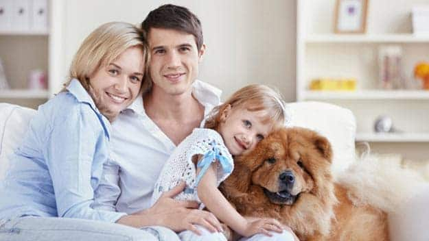 Wills & Trusts dog-young-family Direct Wills Millbank